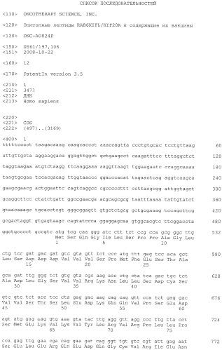 Эпитопные пептиды rab6kifl/kif20a и содержащие их вакцины