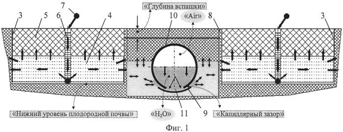Способ повышения плодородности почвы для древесных и травянистых культур (вариант русской логики - версия 5)