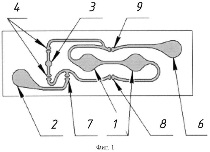 Способ оценки жизнеспособности клеток в микробиореакторе с помощью оптического световода