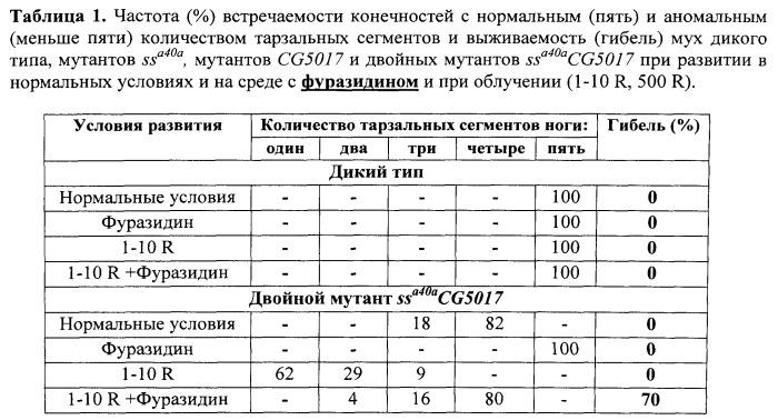 Способ оценки фармакологических и токсикологических свойств веществ - радио-, токсикопротекторов и радио-, токсикосенсибилизаторов