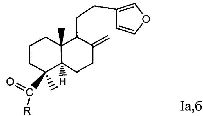 Амиды ламбертиановой кислоты, обладающие анальгетической активностью и стимулирующим действием