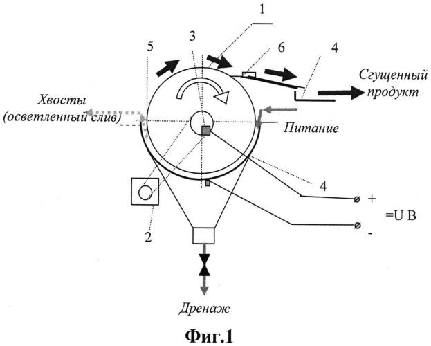 Способ извлечения сапонитсодержащих веществ из оборотной воды и устройство для его реализации