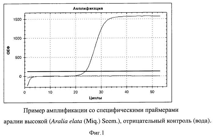 Набор синтетических олигонуклеотидов для выявления видовой принадлежности аралии высокой (aralia elata (miq.) seem.)