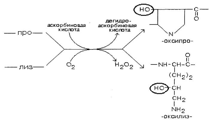 Композиция для приготовления функционального кондитерского желейного продукта и способ его получения