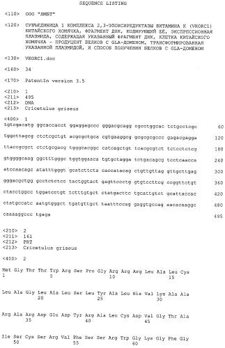 Плазмида для экспрессии в клетке китайского хомячка, клетка китайского хомячка - продуцент белка с gla-доменом и способ получения белка с gla-доменом