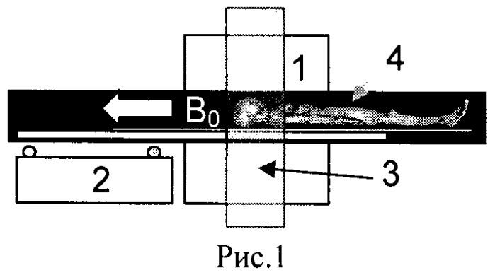 Способ количественной оценки содержания жировой ткани в теле биологического объекта