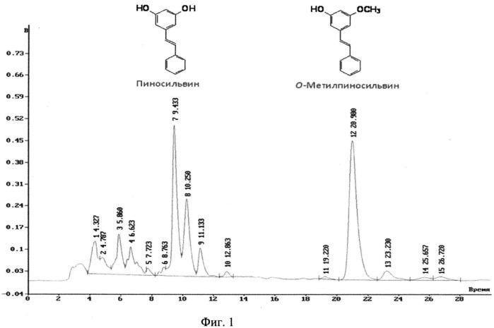 Способ выделения полифенольных соединений класса стильбенов пиносильвина и метилпиносильвина из отходов переработки сосны