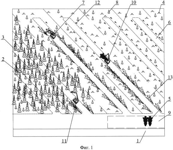 Способ валки и трелевки деревьев валочно-трелевочной машиной