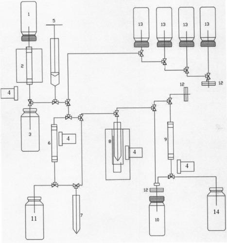 Способ получения радиоиммунного препарата для диагностики и терапии онкологических заболеваний