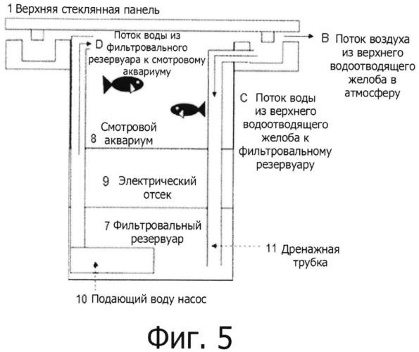 Усовершенствованный аквариум, приспособленный для верхнего наблюдения за аквариумными рыбками