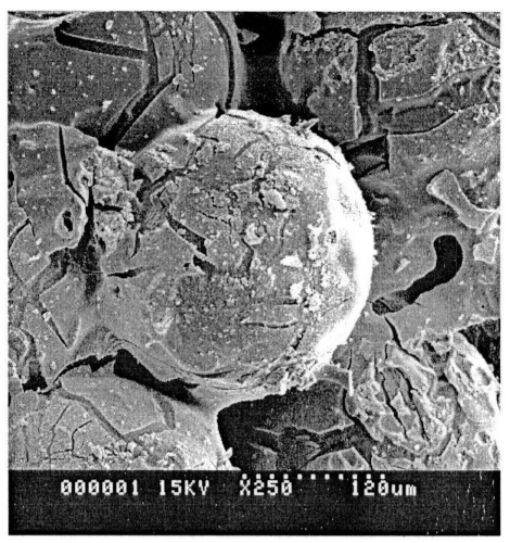 Катализатор и способ получения синтетических углеводородов алифатического ряда из оксида углерода и водорода в его присутствии