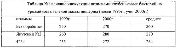 Способ повышения содержания гумуса почвы с применением штамма клубеньковых бактерий якутский №2 люцерны