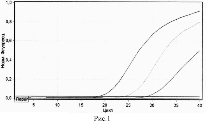 Флуоресцентно-меченый олигонуклеотидный зонд pr-sow для идентификации возбудителя кокцидиоидомикоза coccidioides posadasii