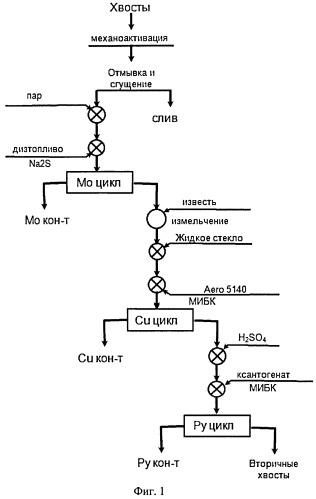 Способ флотационной переработки текущих и лежалых хвостов обогащения, содержащих минералы меди и молибдена