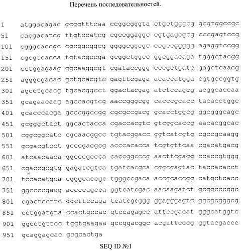 Рекомбинантная двухдоменная лакказа бактерии streptomyces griseoflavus ac-993, обладающая высокой термостабильностью и щелочным оптимумом pн окисления фенольных соединений; фрагмент днк, кодирующий двухдоменную лакказу бактерии streptomyces griseoflavus ac-993; способ получения двухдоменной лакказы бактерии streptomyces griseoflavus ac-993