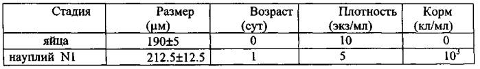 Способ культивирования каланоидных копепод calanus euxinus (черноморского калянуса)