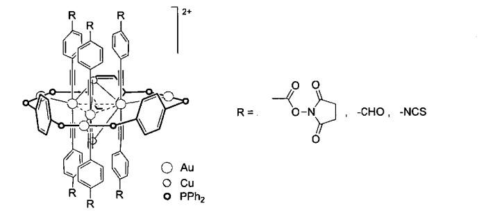 Алкинилфосфиновые золотомедные комплексы как люминисцентные метки для флуоресцентной микроскопии