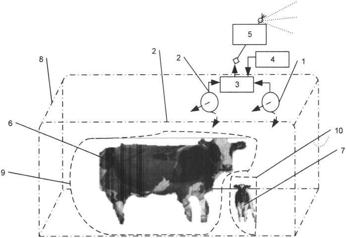 Способ и устройство дистанционной фиксации момента появления потомства сельскохозяйственных животных