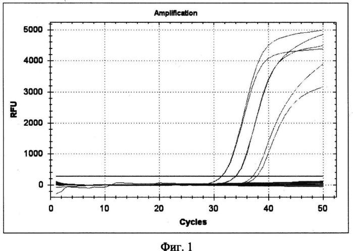 Набор реагентов и способ для выявления днк возбудителей чумы, сибирской язвы и туляремии методом пцр с гибридизационно-флуоресцентным учетом результатов