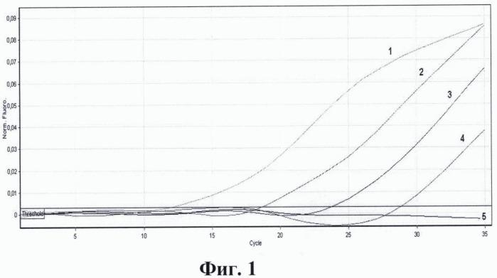Набор олигодезоксирибонуклеотидных праймеров и флуоресцентно-меченых днк-зондов для идентификации рнк энтеровирусов, риновирусов, вирусов гепатита а и е из водной среды методом мультиплексной пцр