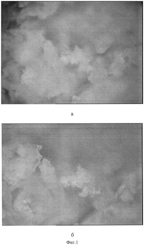 Способ получения инкапсулированного антисептика-стимулятора а.в. дорогова (асд 2 фракция)