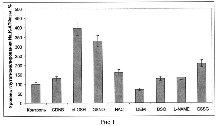 Способ защиты клеток от повреждения при гипоксии путем глутатионилирования каталитической субъединицы na, к-атфазы