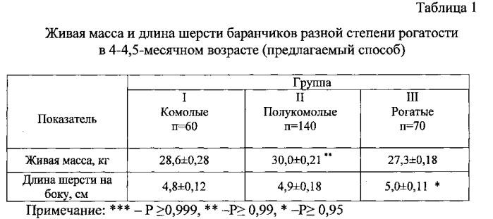 Способ оценки мясо-шерстной продуктивности тонкорунных овец в зависимости от степени рогатости баранчиков