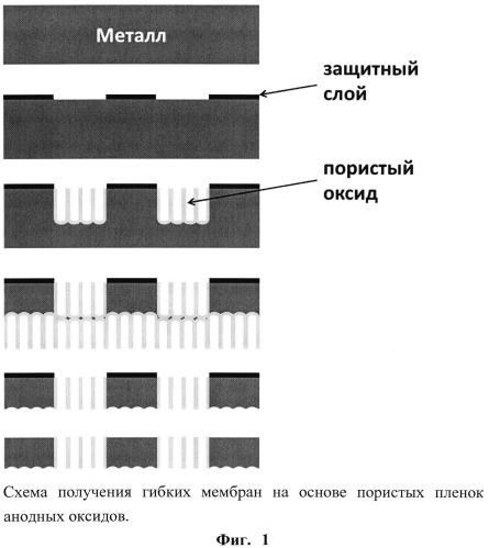Способ получения гибкой нанопористой композиционной мембраны с ячеистой структурой из анодного оксида металла или сплава