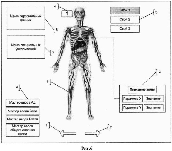 Способ визуализации функционального состояния индивида и система для реализации способа