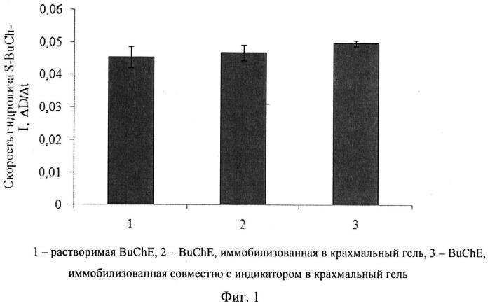 Ферментный препарат на основе иммобилизованной бутирилхолинэстеразы и способ его приготовления