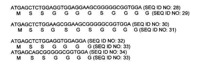 Нелипидизированные варианты антигенов neisseria meningitidis orf2086