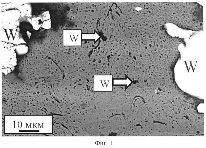 Способ нанесения электроэрозионностойких покрытий на основе вольфрама и меди на медные электрические контакты