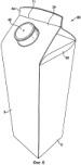 Картонная заготовка для формирования коробки (варианты) и коробка (варианты)