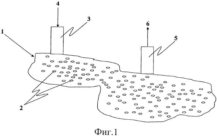 Способ извлечения тяжелой нефти из подземного месторождения