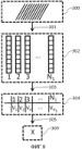 Система и способ для связанной со временем микроскопии биологических организмов