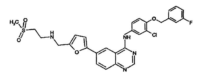 Фармацевтическая композиция, содержащая n-[3-хлор-4-[(3-фторфенил)метокси]фенил]-6-[5[[[2-(метилсульфонил)этил]амино]метил]-2-фурил]-4-хиназолинамин