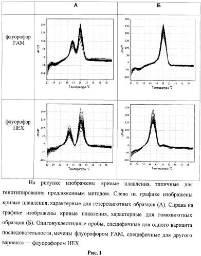 Способ определения генотипа человека по полиморфизму в гене матриксной металлопротеиназы ммр9-1562 с>т (rs3918242)
