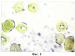 Способ оценки нарушения оксигенации гемоглобина в эритроцитах периферической крови беременных на третьем триместре гестации при снижении глюконеогенеза на фоне обострения цитомегаловирусной инфекции