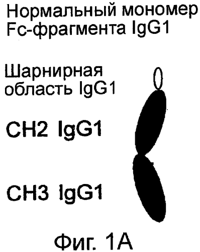Средства на основе константной области иммуноглобулина связывающие fc-рецептор