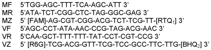 Синтетические олигонуклеотидные праймеры и их использование в способе выявления и дифференциации генома вакцинного штамма в-82 от полевых изолятов вируса миксомы кроликов методом полимеразной цепной реакции в режиме реального времени