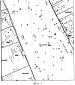 Способ экологического измерения сторон березняка городского сквера по флуктуирующей асимметрии листьев