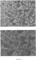 Способ получения смеси ветома 1.1 и сел-плекса, обладающих супрамолекулярными свойствами