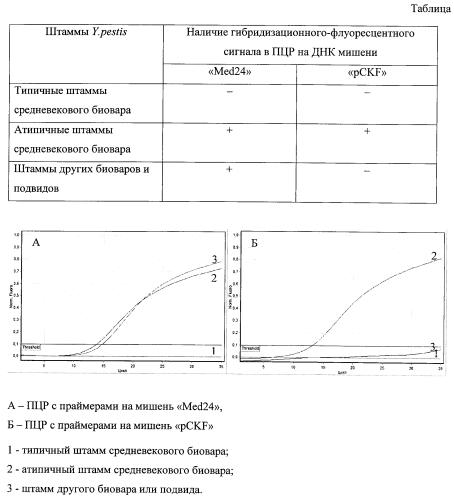 Способ дифференциации типичных и атипичных штаммов yersinia pestis средневекового биовара методом пцр с гибридизационно-флуоресцентным учетом результатов