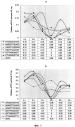 Способ воздействия на пролиферативный статус клеток с помощью специфических нуклеотидных последовательностей g-цепи теломерной днк человека