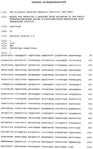 Способ получения l-аргинина с использованием бактерии семейства enterobacteriaceae, содержащей n-ацетилорнитиндеацетилазу с нарушенной активностью