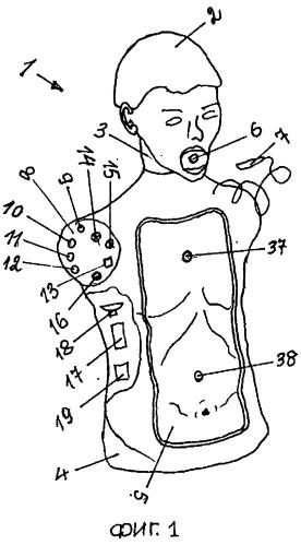 Интерактивный тренажер для отработки навыков по оказанию первой помощи человеку при закупорке верхних дыхательных путей