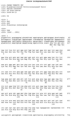 Модифицированный биотинсвязывающий белок (вариант), нуклеиновая кислота его кодирующая, вектор и носитель для связывания биотина