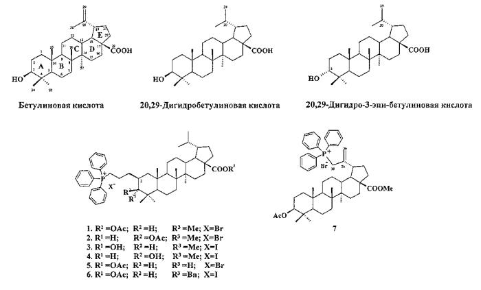 Трифенилфосфониевые соли лупановых тритерпеноидов, способ получения и применение в качестве противоопухолевых веществ