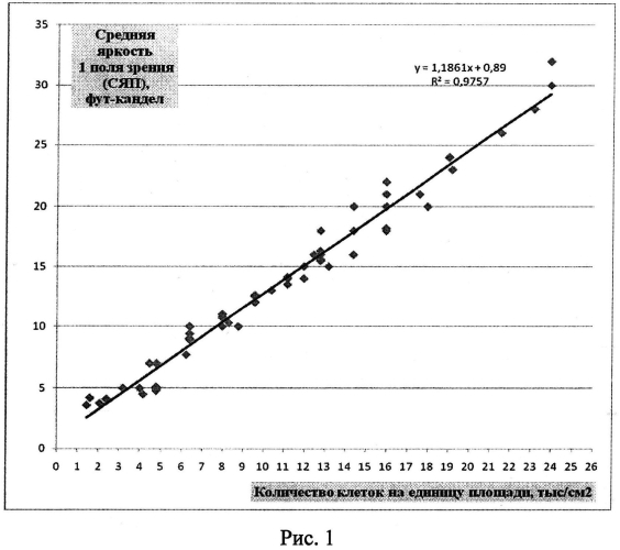 Тест-система для определения активности интерферона человека