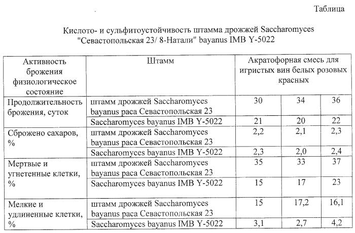 Штамм дрожжей saccharomyces bayanus севастопольская 23/8-натали iмв y-5022 для производства игристых вин резервуарным способом